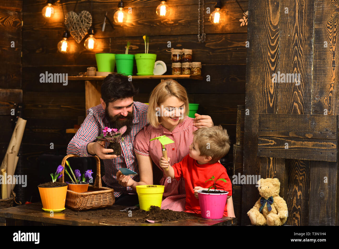 woman, man and little boy child love nature. happy gardeners with spring flowers. Family day. Greenhouse. Father and son with mother. Flower care - Stock Image