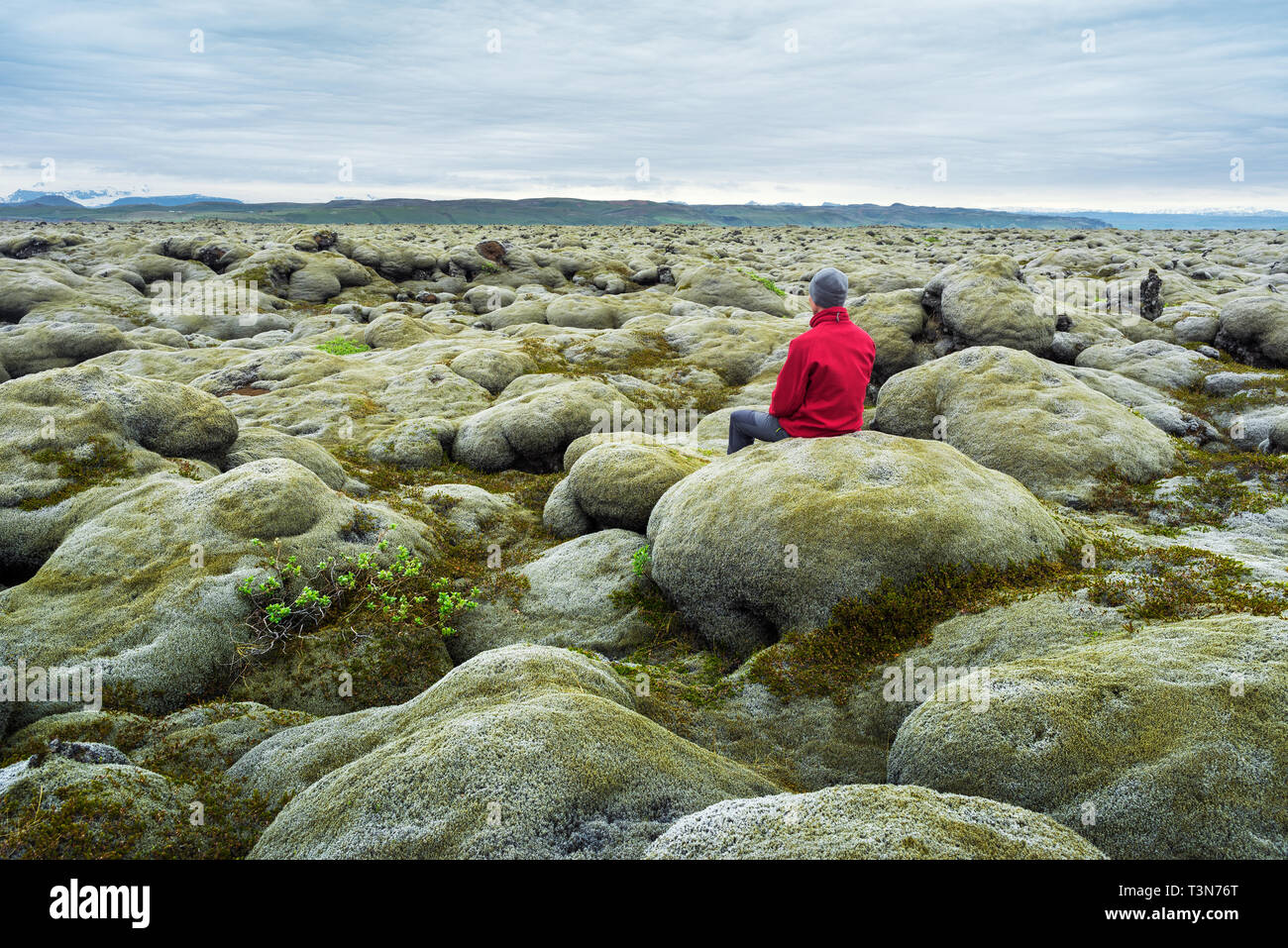 Traveler in a red jacket sits on a moss. Lava field on the south coast of Iceland, Europe. Tourist attraction. Amazing in nature. Cloudy summer day - Stock Image