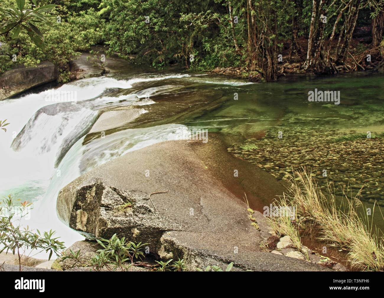 Crystal clear mountain runoff water of Babinda Creek flowing over the rocks at Babinda Boulders Stock Photo