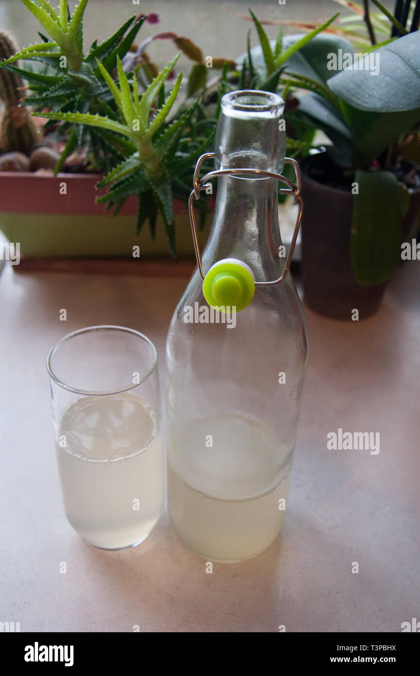 Water kefir beverage is in a liter glass bottle with the cap off, poured in a glass.  This healthy drink is a natural probiotic great for gut health a - Stock Image
