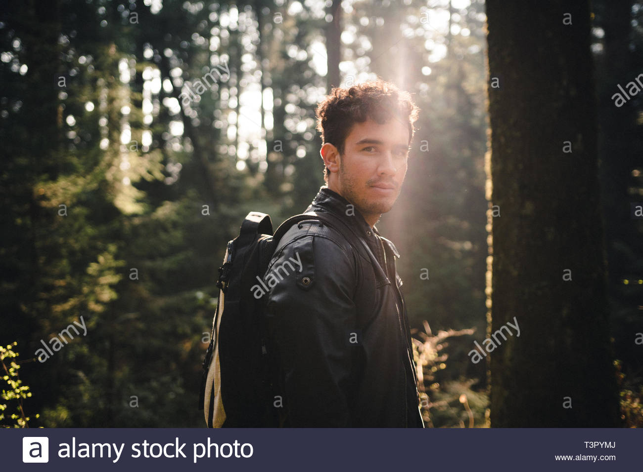 man standing in the middle of forest - Stock Image