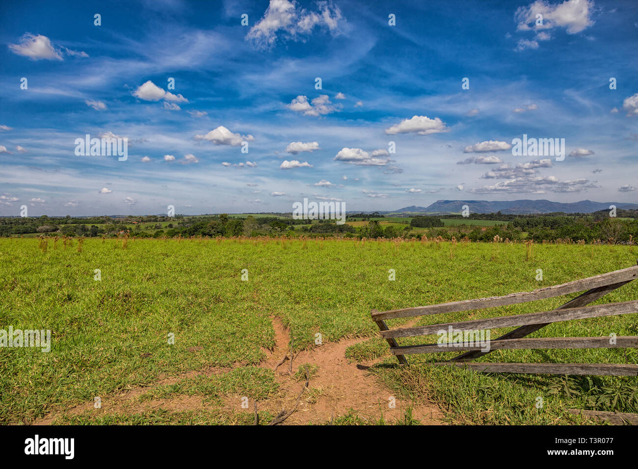 Pastureland in Paraguay overlooking the Ybytyruzu Mountains. - Stock Image