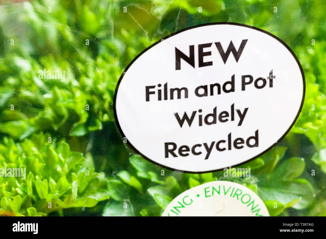 Recycling instructions on pot of Curly Leafed Parsley read Film and Pot Widely Recycled. - Stock Image