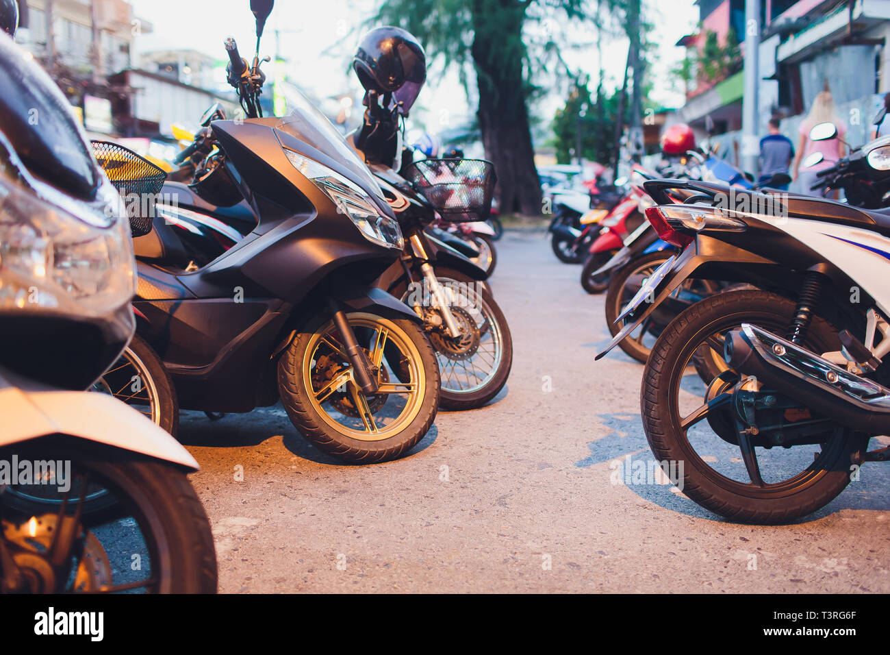 A lot of scooters in the parking, background. Mopeds are on the street. bike for rent. - Stock Image