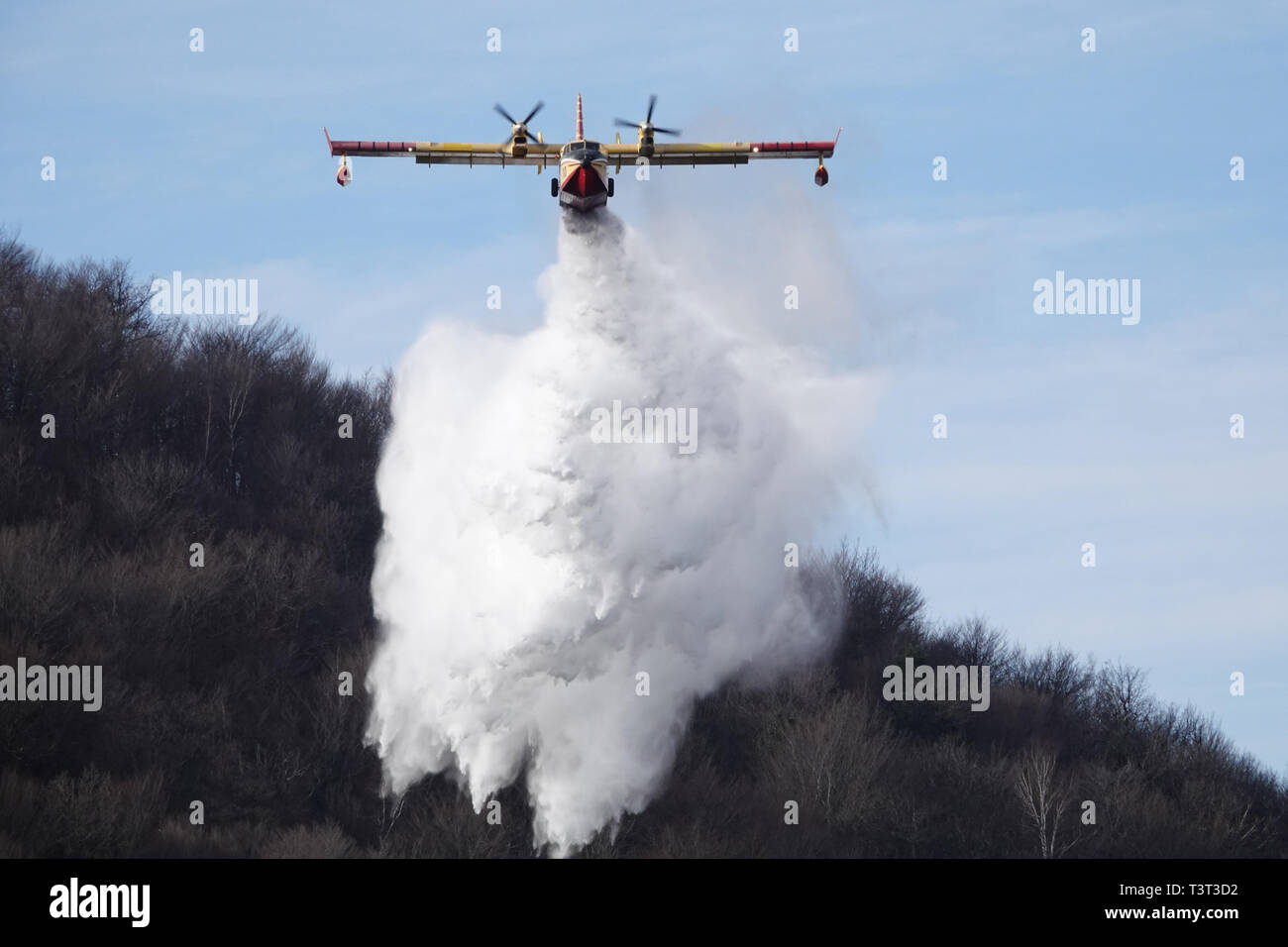 Canadair, Forest fire, water bomber, wildfire, extinguish fire, - Stock Image