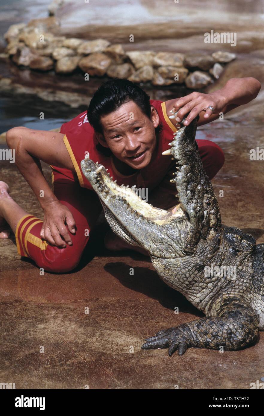 Thailand. Bangkok. Samut Prakan Crocodile Farm. Man putting his head into Crocodile's jaws - Stock Image