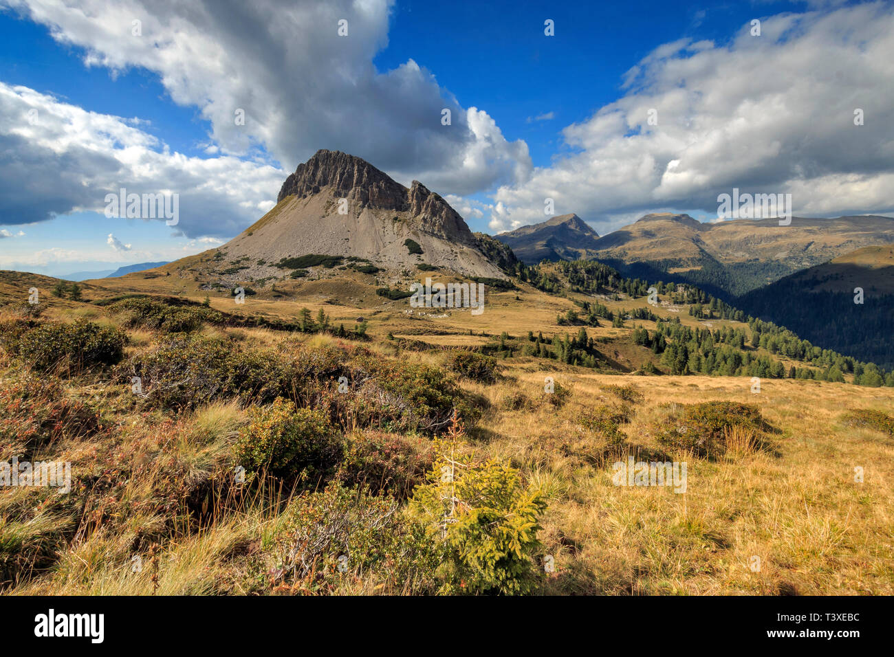The wonderful plateau at Passo Rolle, a high altitude mountain pass linking the Primiero Valley to the Fiemme Valley, in Trentino Alto- Adige region,  - Stock Image
