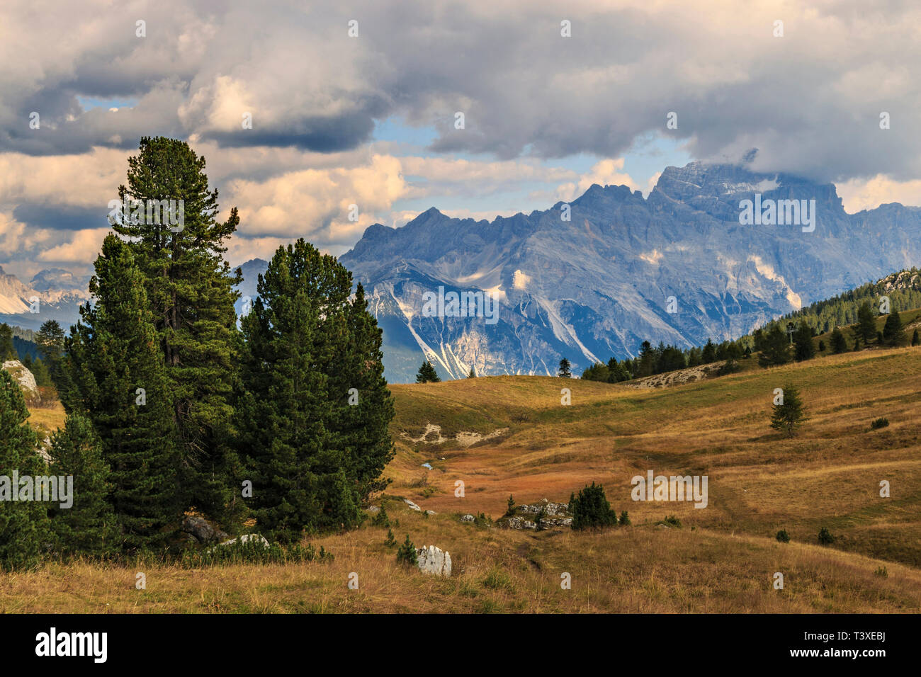 A view from Falzarego Pass, a high altitude road pass linking Val Badia with Cortina d'Ampezzo in the Dolomites, Italy. The prairies at the pass with  - Stock Image