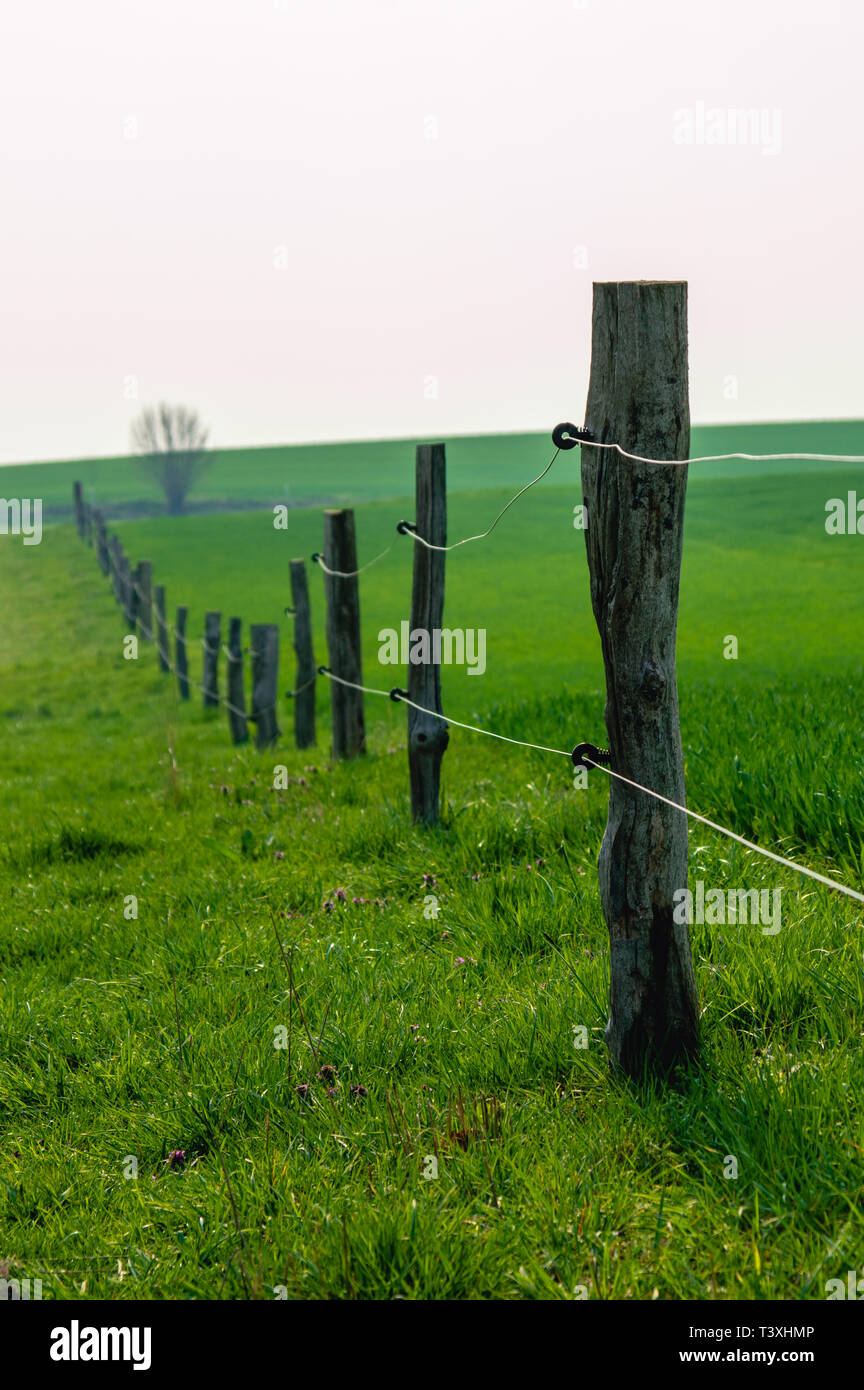 wire fence between wooden fence posts on between two lush green meadows - Stock Image