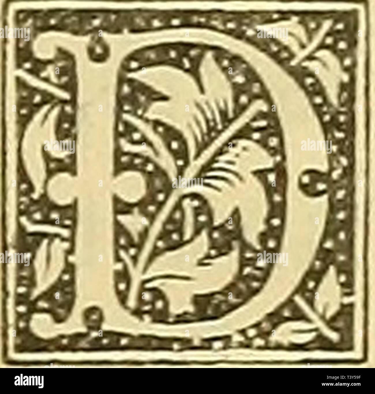 Archive image from page 316 of Die Pflanzen im alten Aegypten. Die Pflanzen im alten Aegypten : ihre Heimat, Geschichte, Kultur und ihre mannigfache Verwendung im sozialen Leben in Kultus, Sitten, Gebräuchen, Medizin, Kunst  diepflanzenimalt00woen Year: 1897  — 323 - Tbeophrast, Plinius, Diodor, Strabon, Plu- tarch, Galen, Nikander, Sostratus und anderen alten Autoren war die Persea {neqaiov) sehr wohl bekannt. Nach D i 0 d 0 r 1) ist dieselbe erst unter Kambyses von äthio- pischen Anbauern nach Aegypten eingeführt worden. Für Aethiopien vermerkt sie auch Strabon und zwar unweit der östlichen  - Stock Image