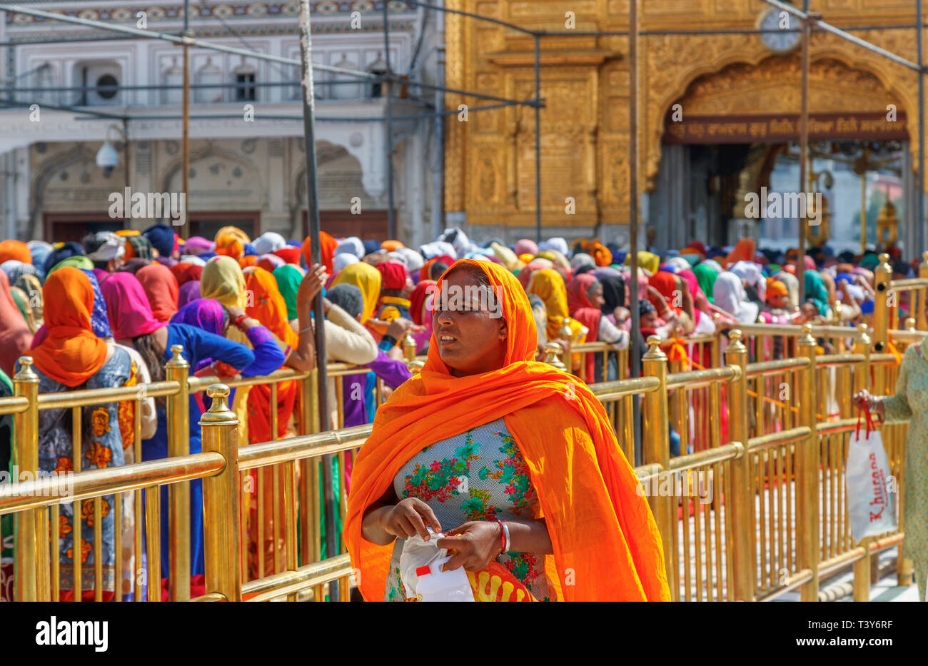 Local Sikh women queueing on the Causeway to enter the Sanctum Sanctorum of the Golden Temple of Amritsar, the holiest pilgrimage site of Sikhism - Stock Image