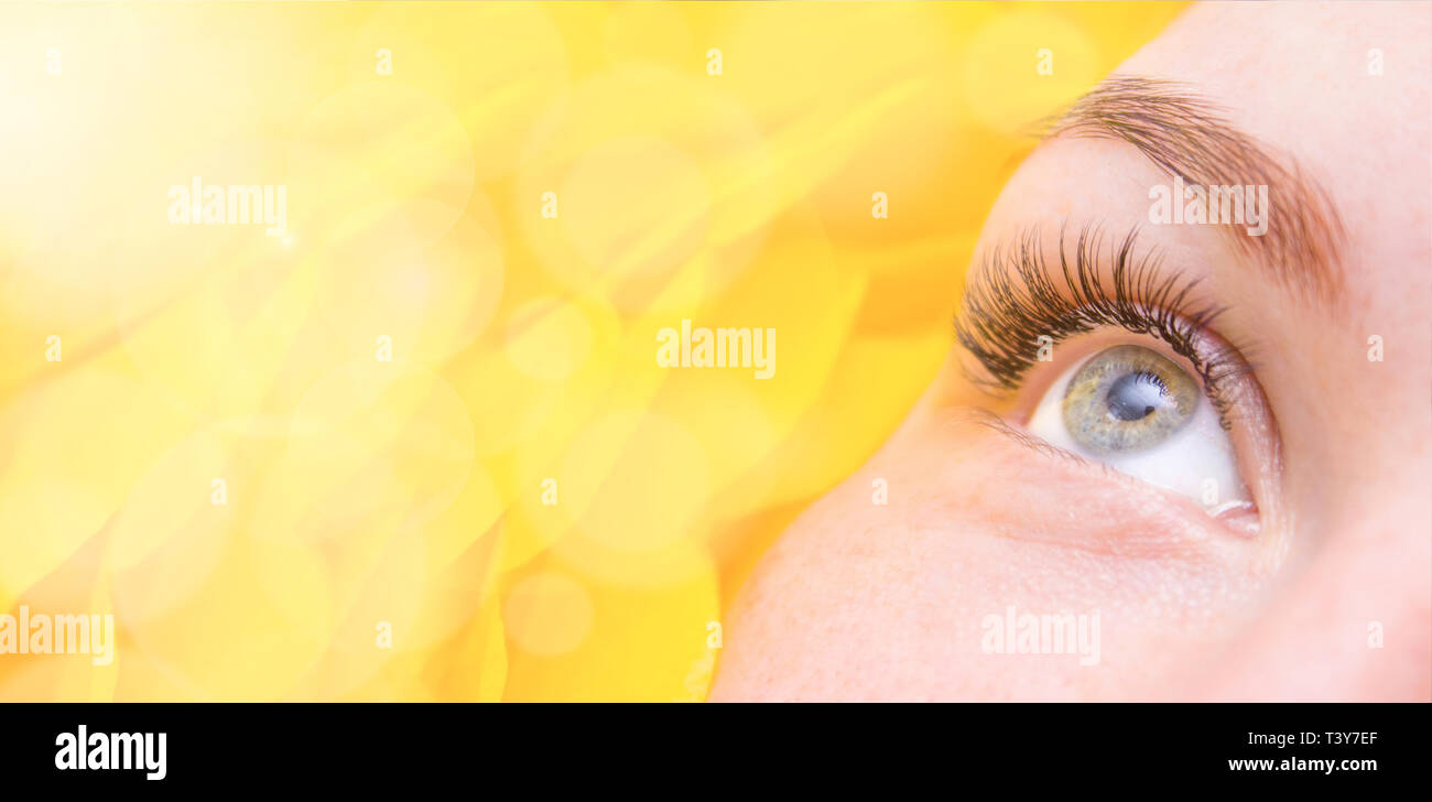 Extra Wide Banner Woman Eye With Long False Eyelashes Close Up With Yellow Flower Space For Text Mock Up Beauty Salon And Eyelash Extension Proced Stock Photo Alamy