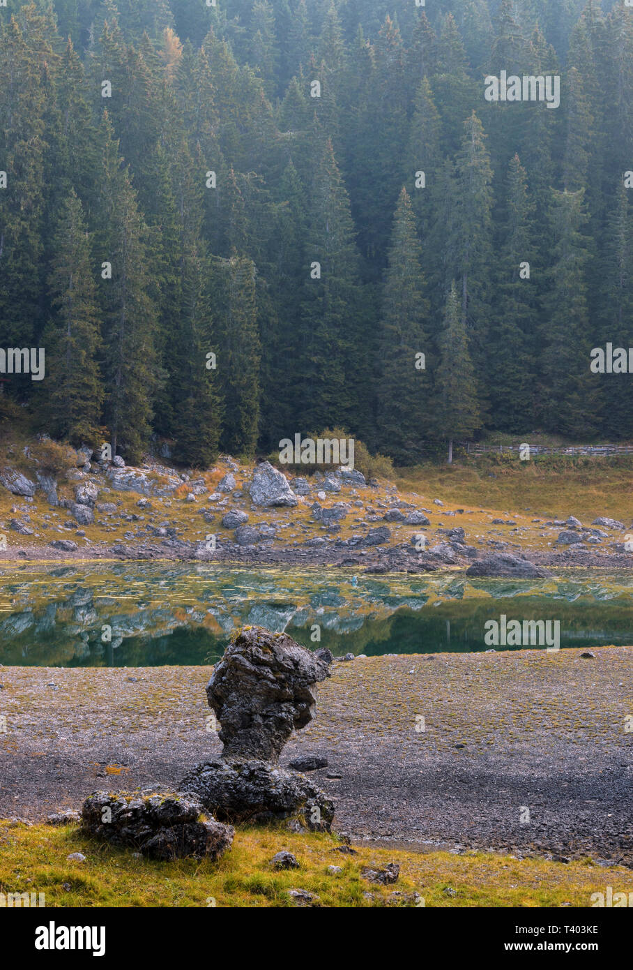 A view at sunrise of the woods surrounding the lake of Carezza (Karessee). Taken at sunrise on a morning at the beginning of October - Stock Image