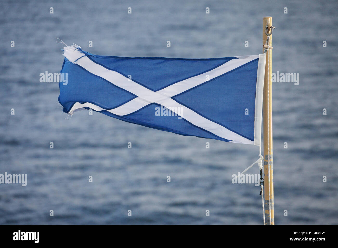 Scottish flag flying from the stern of the Caledonian MacBrayne ferry Finlaggan Scotland UK Stock Photo