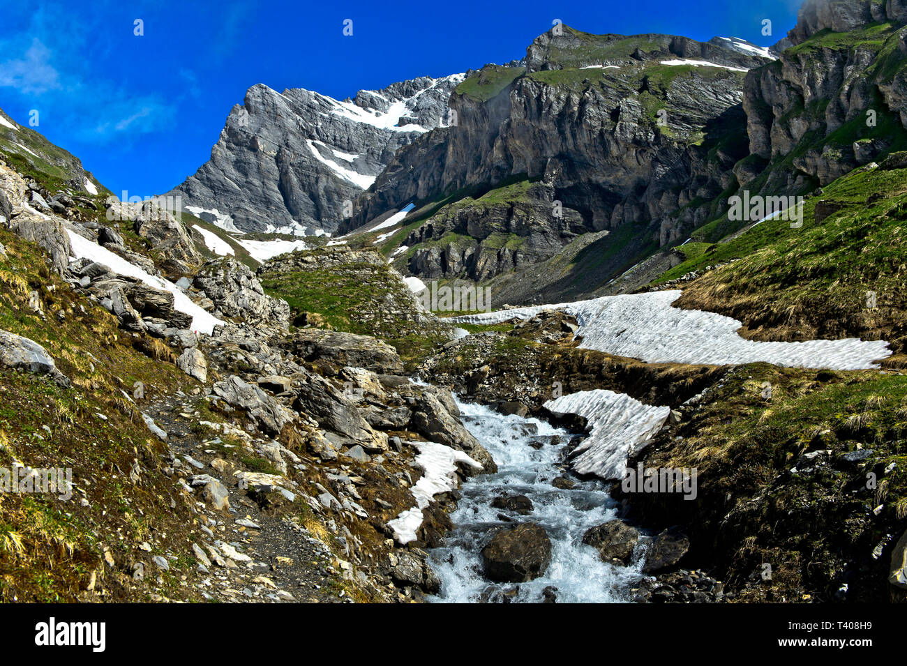 Mountain stream in the high mountains in spring, Grand Muveran, Ovronnaz, Valais, Switzerland - Stock Image