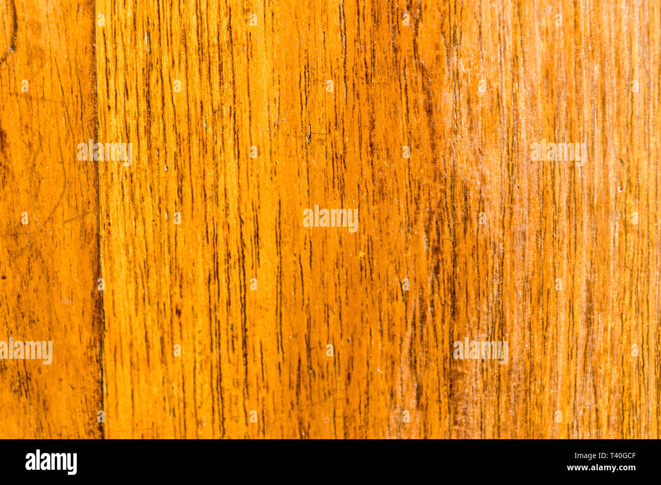 Yellow colored old natural wooden board textured flooring background. Surface of oak wood for design and decoration. Studio shot with copy space room  - Stock Image