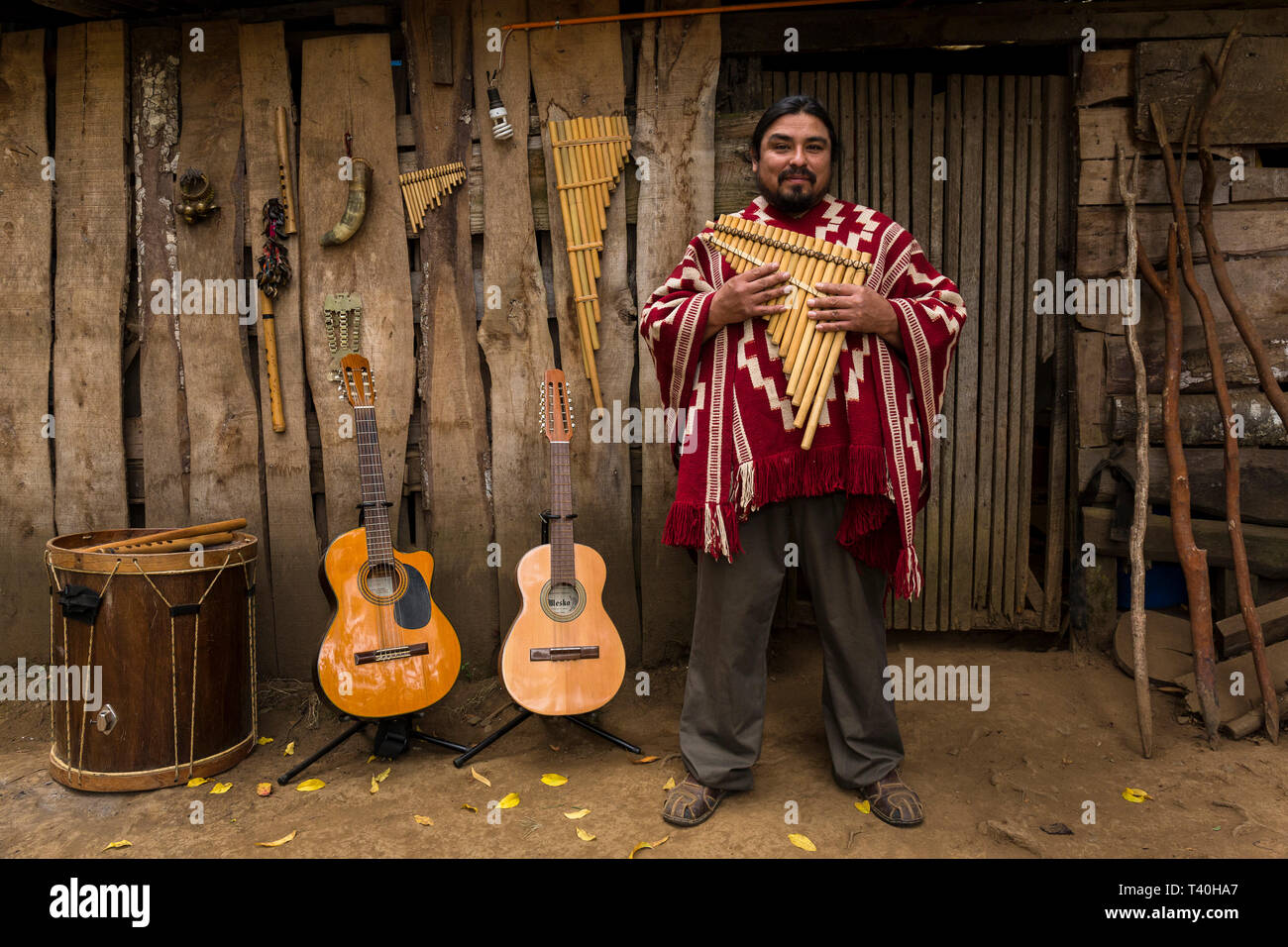 Musician José Otaiza, in front of his ancestral home. He is half Mapuche Indian and dedicated his adult life to the preservation of his cultural roots - Stock Image