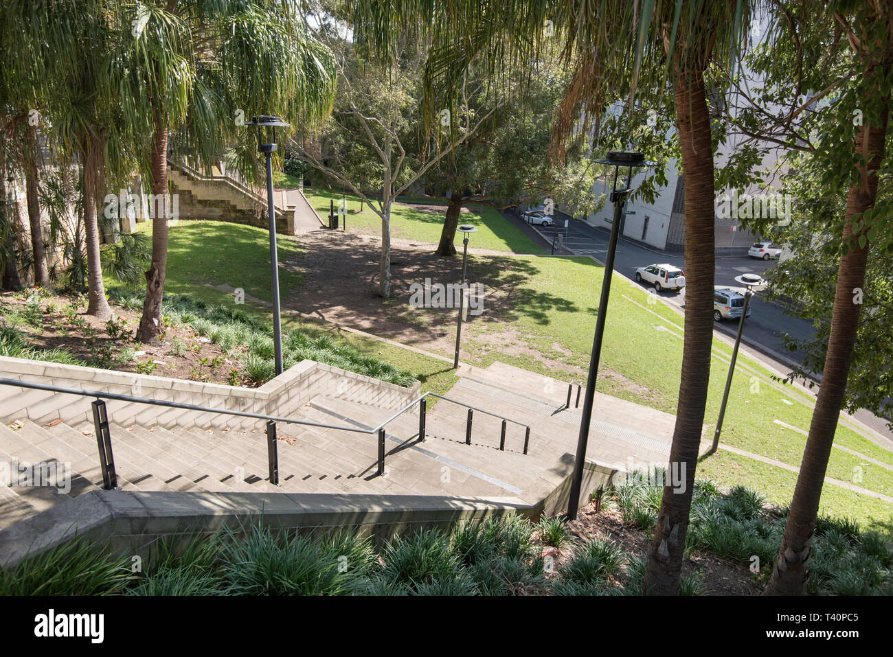 Frog Hollow Reserve in the Sydney suburb of Surry Hills provides much needed open green space in an increasingly high density suburb Stock Photo