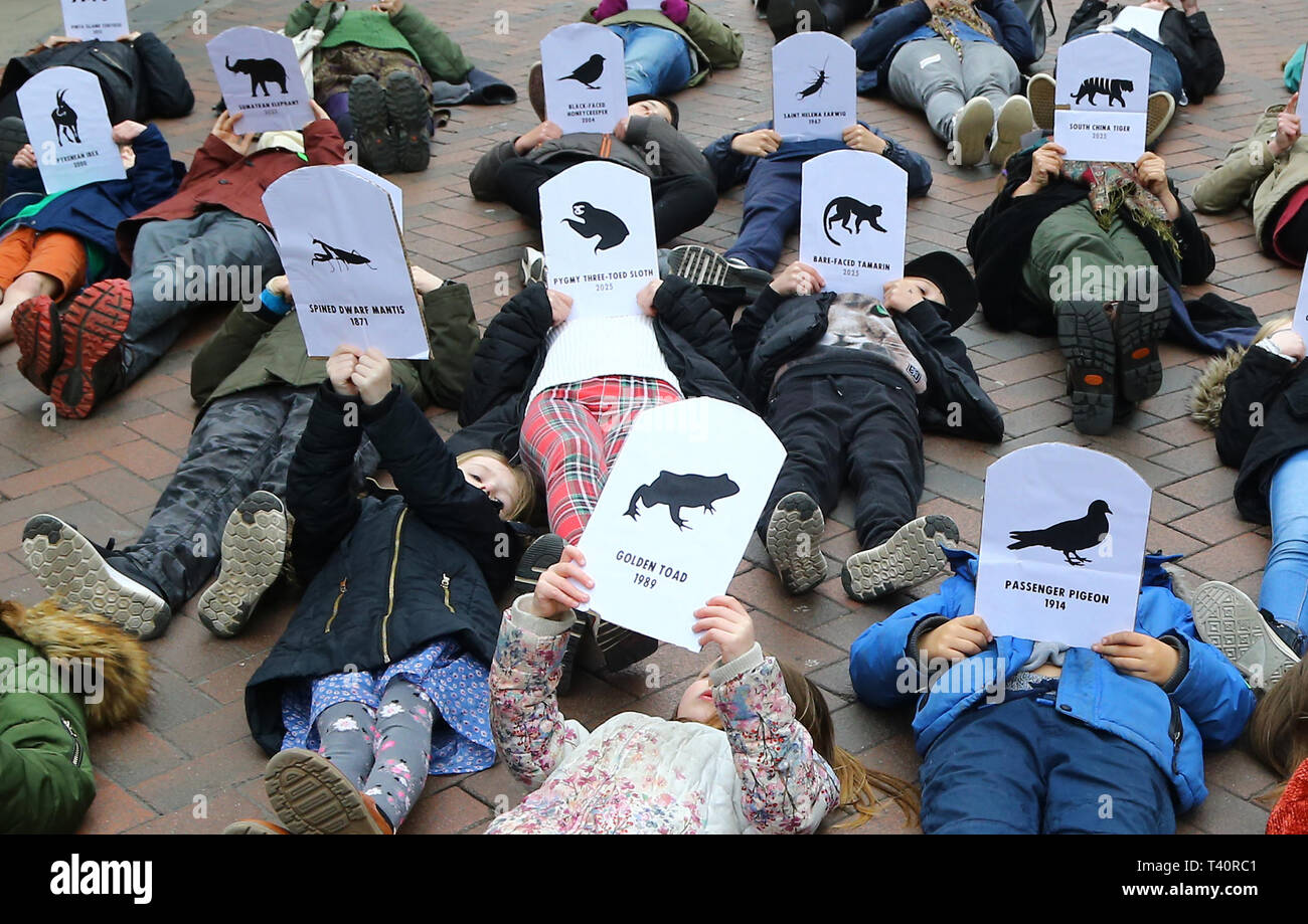 Students hold pictures of endangered and extinct animals as they take part in a strike for climate change in Canterbury, Kent, part of the YouthStrike4Climate movement as protests are planned in towns and cities in the UK. - Stock Image