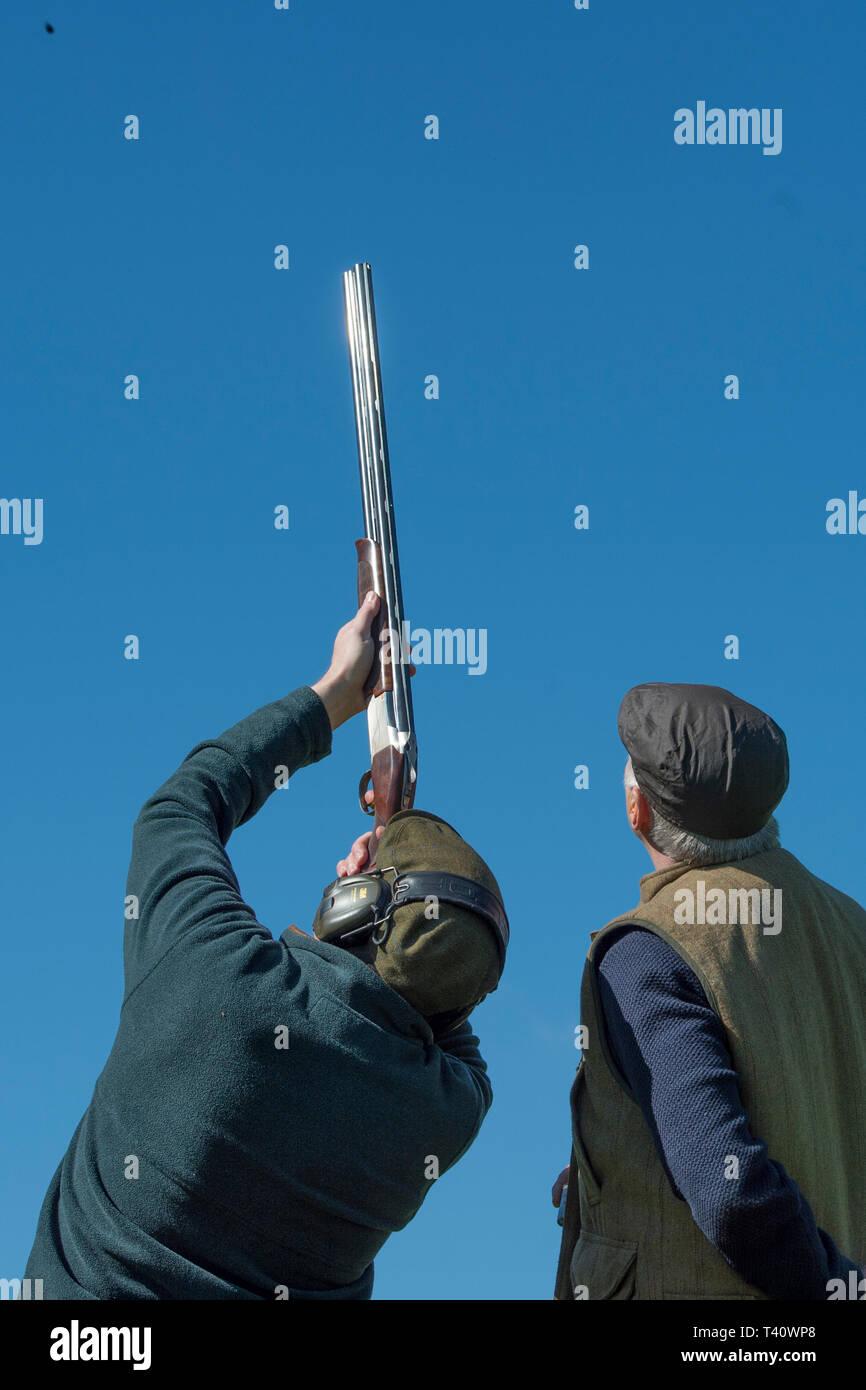 clay pigeon shooting - Stock Image