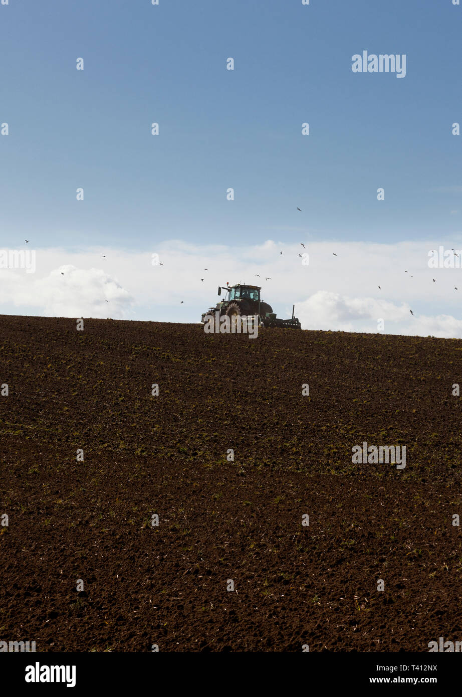 A tractor cultivating a field on a hill - Stock Image
