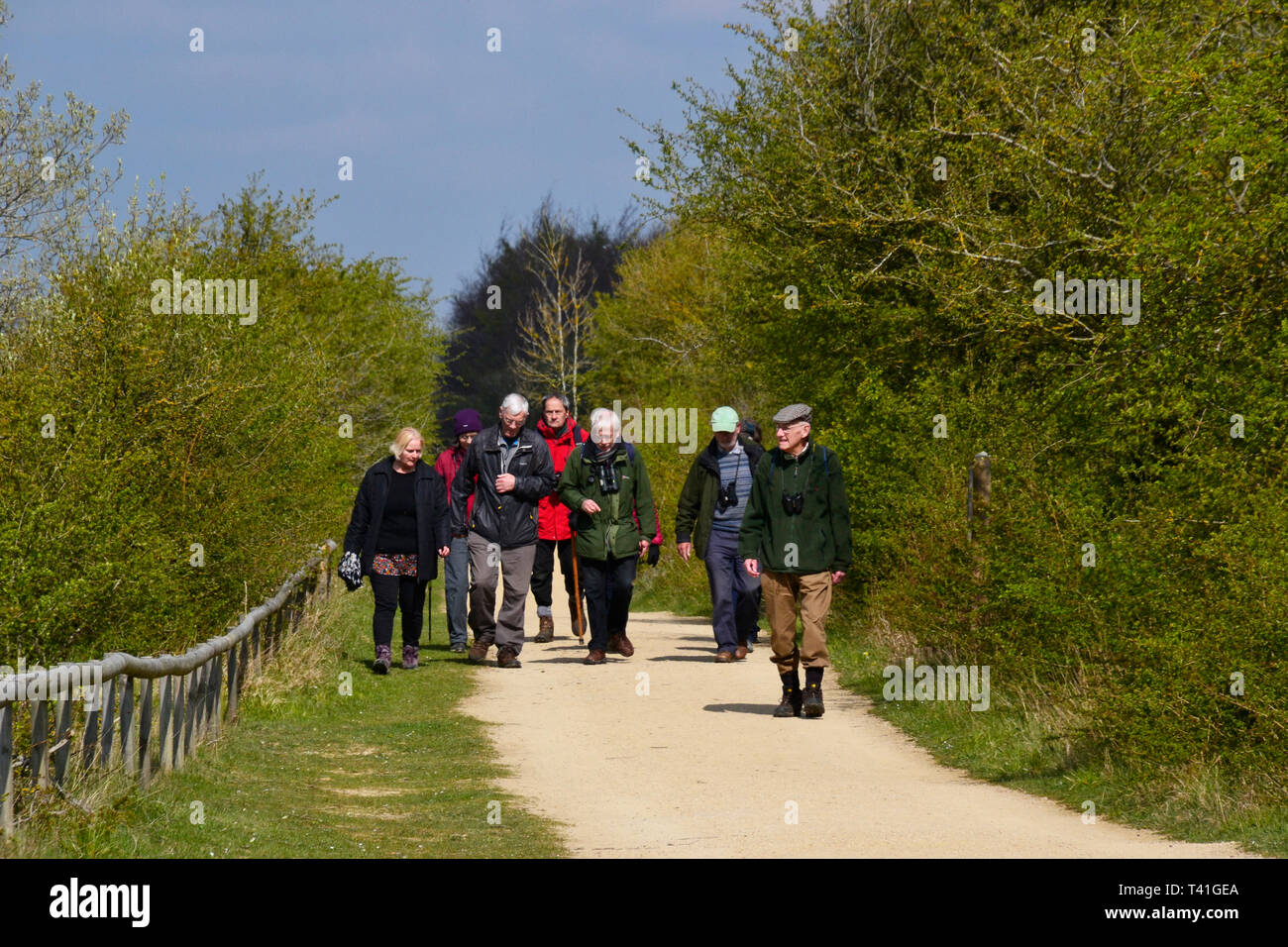 College Lake Nature Reserve, Tring, Hertfordshire, UK Stock Photo