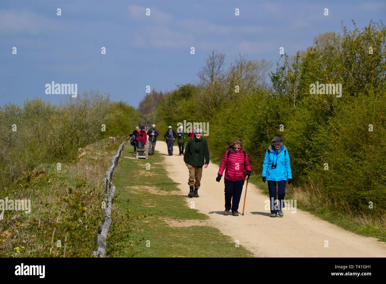 College Lake Nature Reserve, Tring, Hertfordshire, UK Stock Photo