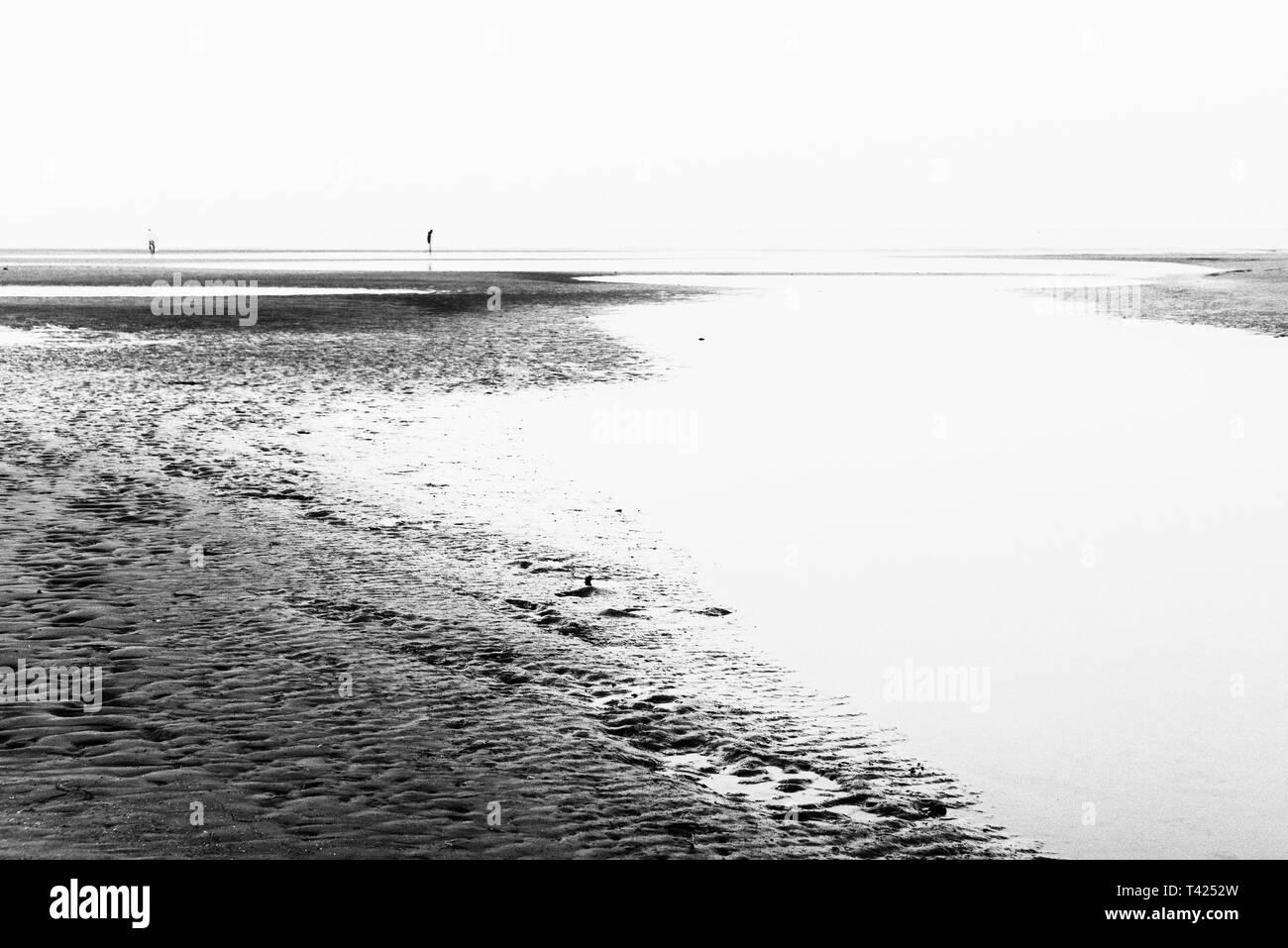 summer twilight over the coastline inside the lagoon in Bibione, Venice Stock Photo