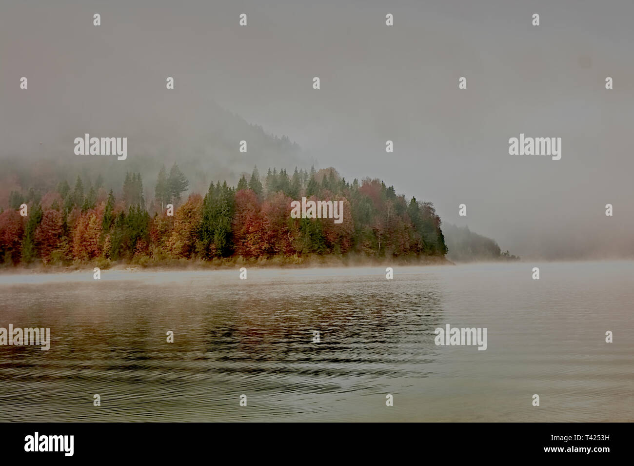 Lake Sylvenstein - Stock Image