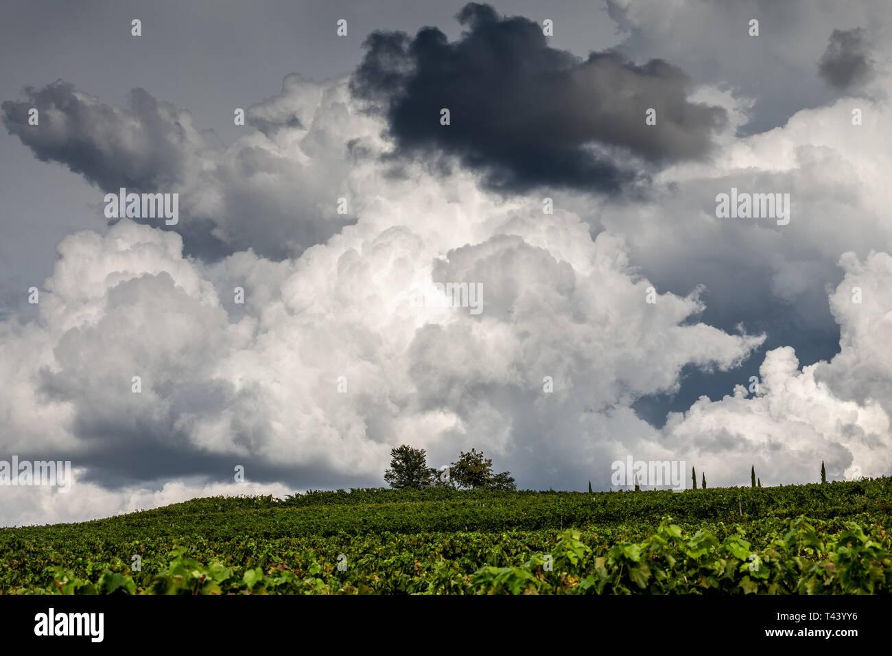 Clouds, cumulonimbus. Dramatic sky. Croatia. - Stock Image