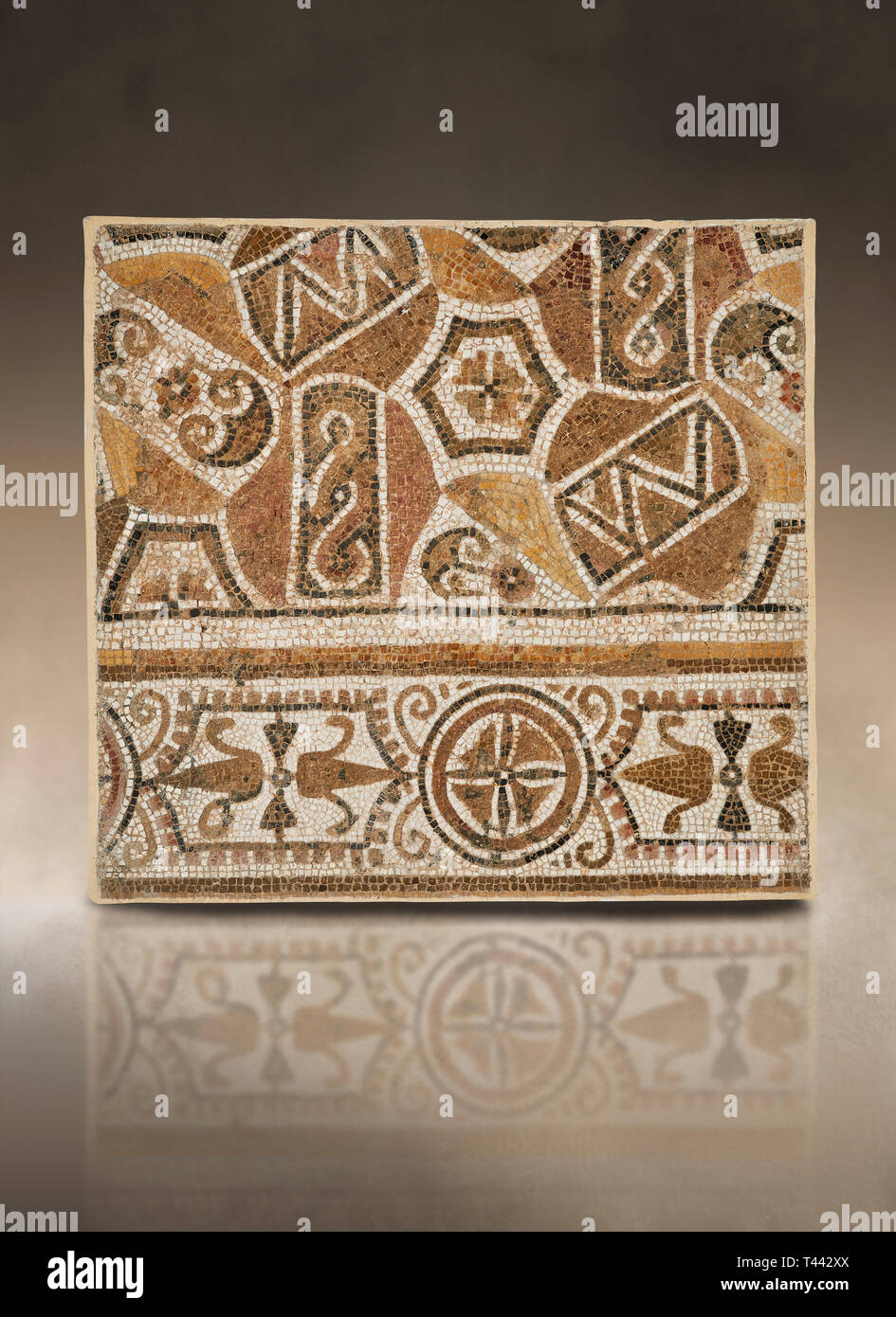 Pictures of a geometric Roman mosaic, from the ancient Roman city of Thysdrus. 3rd century AD. El Djem Archaeological Museum, El Djem, Tunisia. - Stock Image