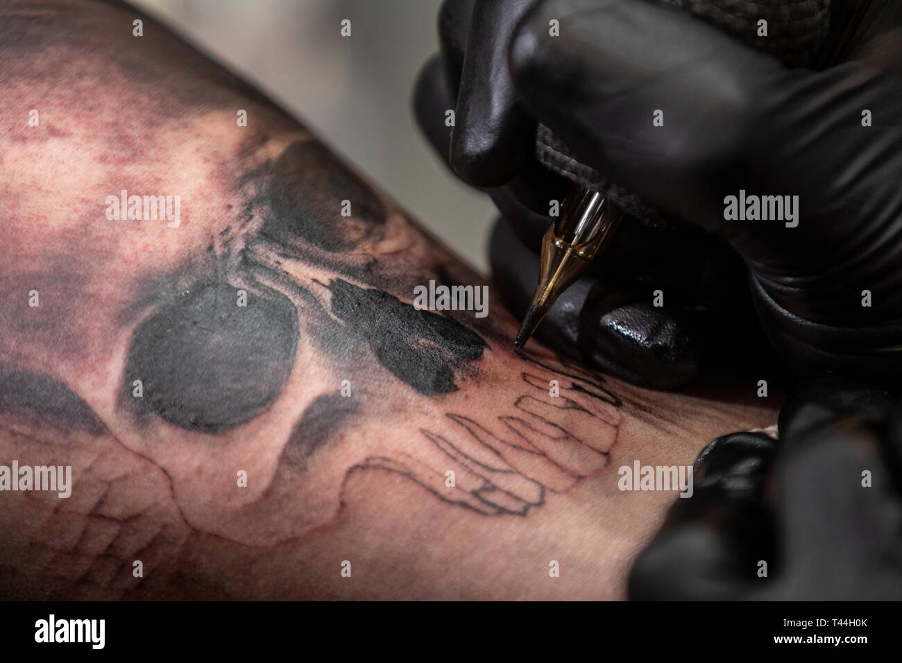 Skull Tattoo Design Stock Photos & Skull Tattoo Design Stock