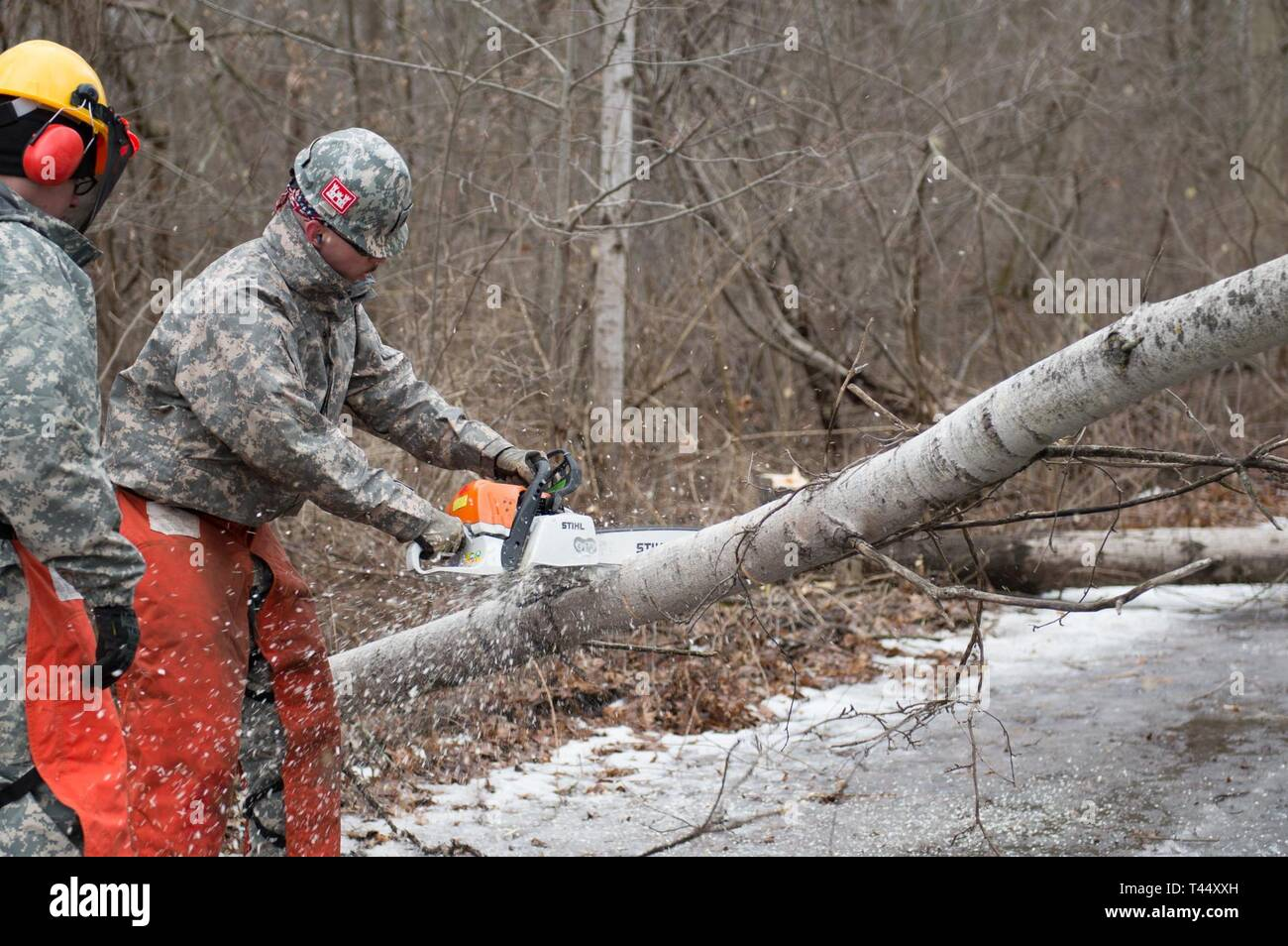 Staff Sgt. William Jolly assigned to the 21st Detachment, 10th Area Command, New York Guard, Rochester, trains Soldier on chainsaw operations at Youngstown Local Training Area, Feb. 24, 2019. The training team was composed of New York Army National Guard and New York Guard Soldiers. They trained on how to use the equipment properly and safely. These Soldiers are just a few of more than 250 Soldiers and Airmen that are deployed to Western New York for debris clearing missions in support of Operation February Winter Storm. - Stock Image