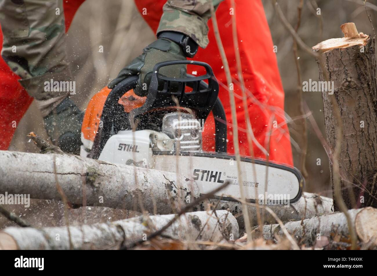A Soldier cuts into a log with a chainsaw during training at Youngstown Local Training Area, Feb. 24, 2019. The training team was composed of New York Army National Guard and New York Guard Soldiers. They trained on how to use the equipment properly and safely. These Soldiers are just a few of more than 250 Soldiers and Airmen that are deployed to Western New York for debris clearing missions in support of Operation February Winter Storm. - Stock Image