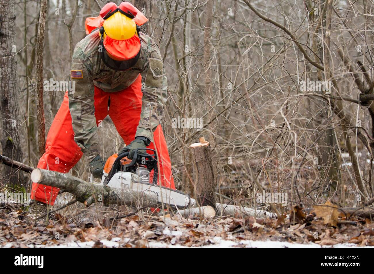 Spc. Kevin Dulinawka assigned to Echo Company, 427th Brigade Support Battalion, 152nd Brigade Engineering Battalion, 27th Infantry Brigade Combat Team, New York Army National Guard, Buffalo, uses a chainsaw at Youngstown Local Training Area, Feb. 24, 2019. The training team was composed of New York Army National Guard and New York Guard Soldiers. They trained on how to use the equipment properly and safely. These Soldiers are just a few of more than 250 Soldiers and Airmen that are deployed to Western New York for debris clearing missions in support of Operation February Winter Storm. - Stock Image