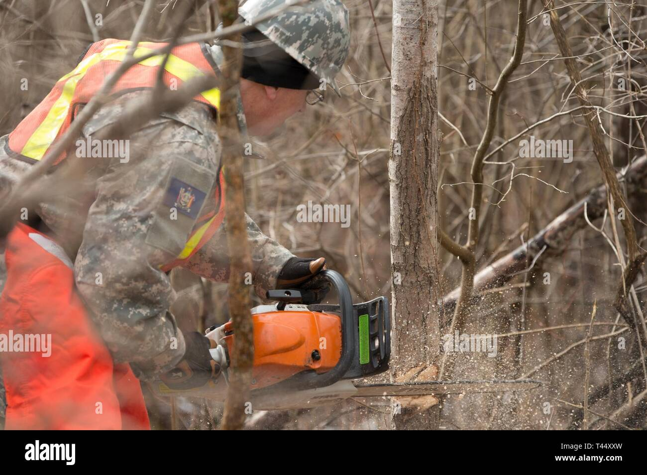 Sgt. Jerry Silvis assigned to the 65th Detachment, 10th Area Command, New York Guard, Buffalo, cuts into a tree with a chainsaw at Youngstown Local Training Area, Feb. 24, 2019. The training team was composed of New York Army National Guard and New York Guard Soldiers. They trained on how to use the equipment properly and safely. These Soldiers are just a few of more than 250 Soldiers and Airmen that are deployed to Western New York for debris clearing missions in support of Operation February Winter Storm. Stock Photo