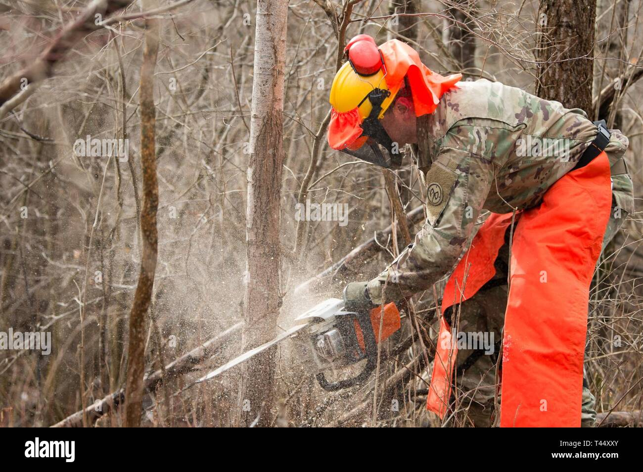Spc. Kevin Dulinawka assigned to Echo Company, 427th Brigade Support Battalion, 152nd Brigade Engineering Battalion, 27th Infantry Brigade Combat Team, New York Army National Guard, Buffalo, creates a shower of saw dust while felling a tree at Youngstown Local Training Area, Feb. 24, 2019. The training team was composed of New York Army National Guard and New York Guard Soldiers. They trained on how to use the equipment properly and safely. These Soldiers are just a few of more than 250 Soldiers and Airmen that are deployed to Western New York for debris clearing missions in support of Operati - Stock Image