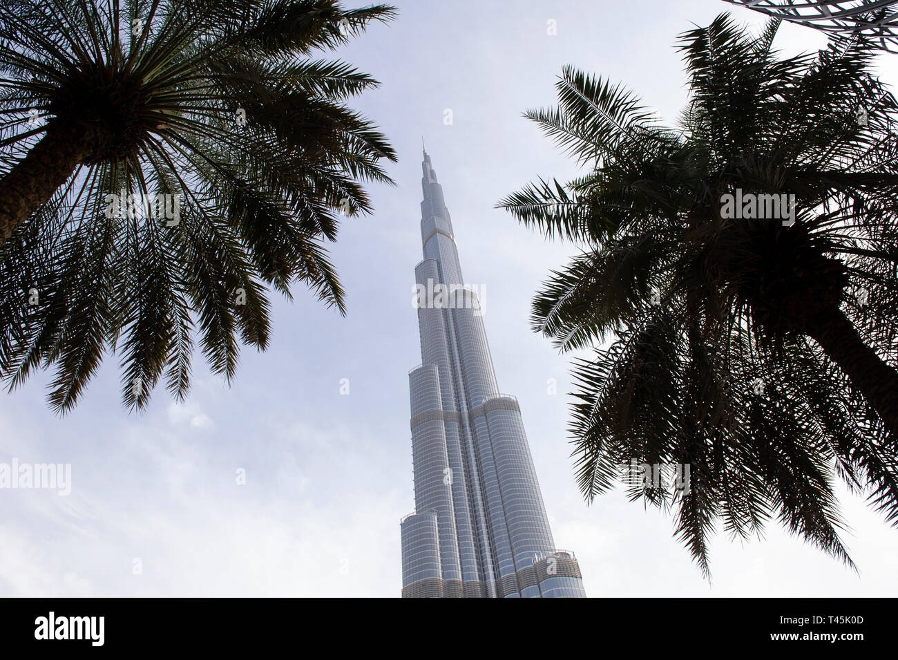 The Burj Khalifa, the tallest building in the world, located in Downtown Dubai in the UAE (United Arab Emirates) - Stock Image