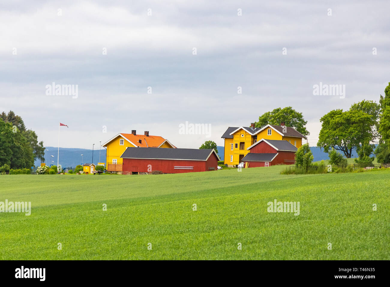 Traditional colored wooden house in Norway at summer day. Country houses in village in Norway. Wooden cottage in the valley. Traditional norwegian woo - Stock Image