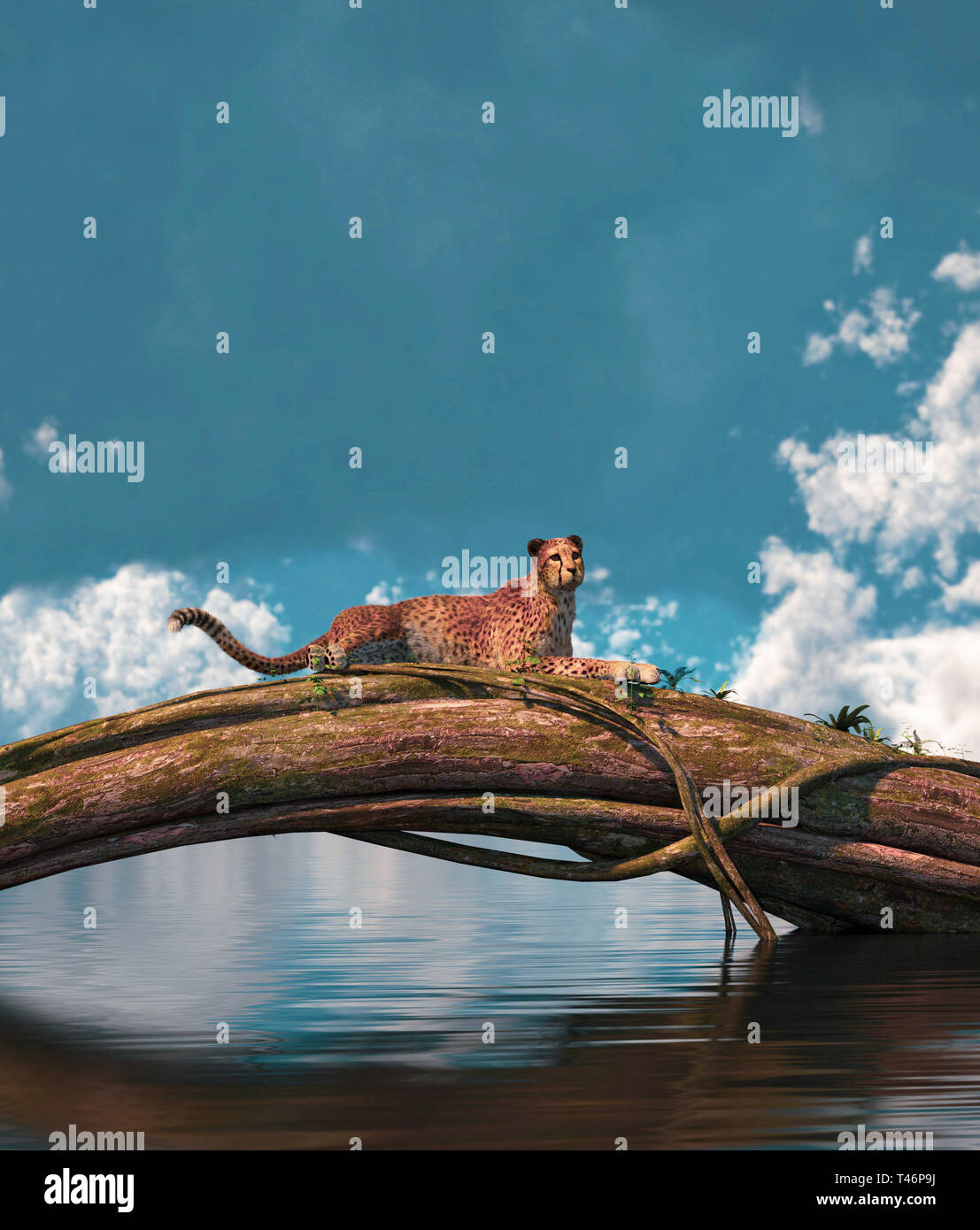 Cheetah resting on a tree trunk,3d rendering Stock Photo