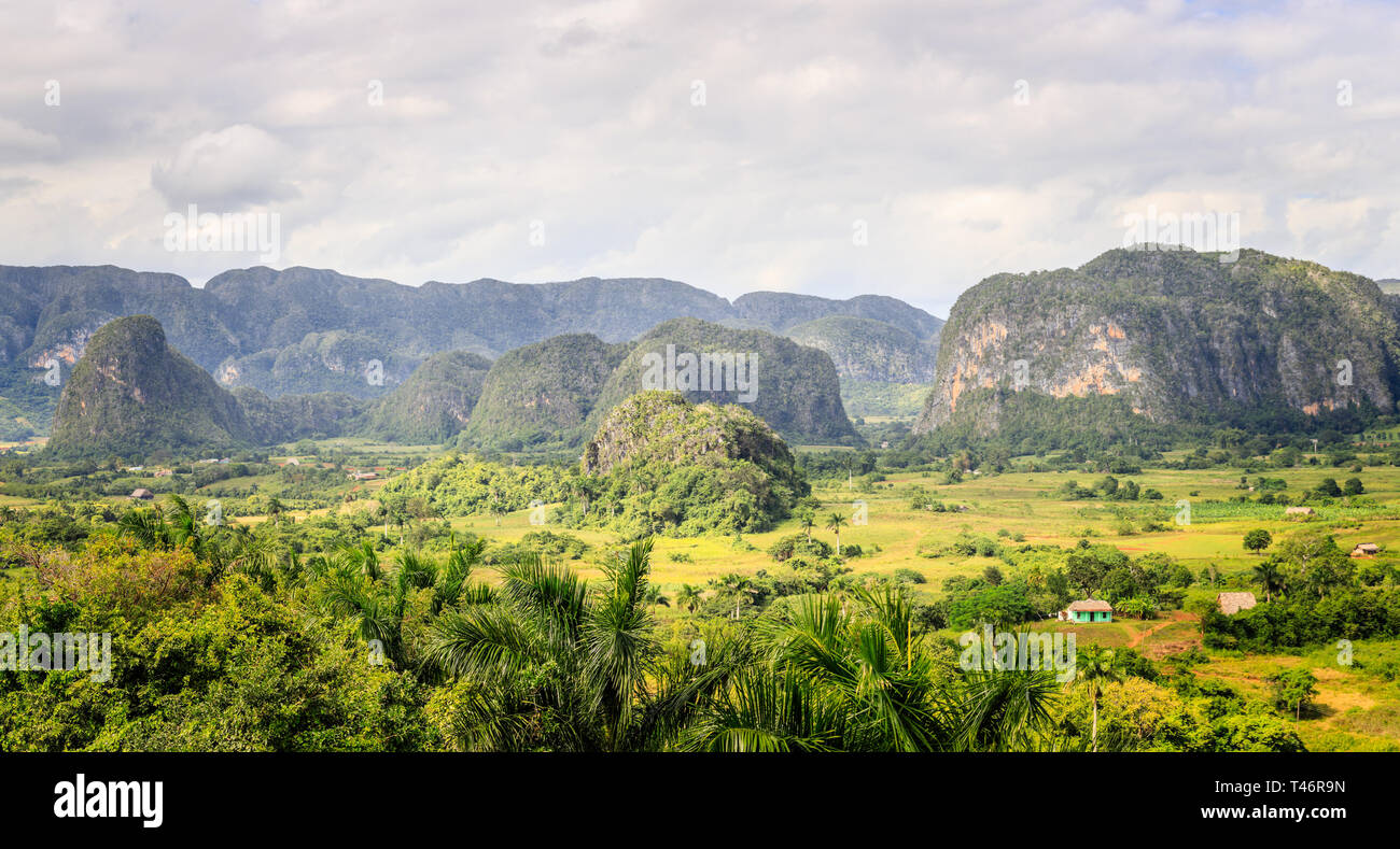 Green caribbean valley with small cuban houses and mogotes hills landscape panorama, Vinales, Pinar Del Rio, Cuba Stock Photo