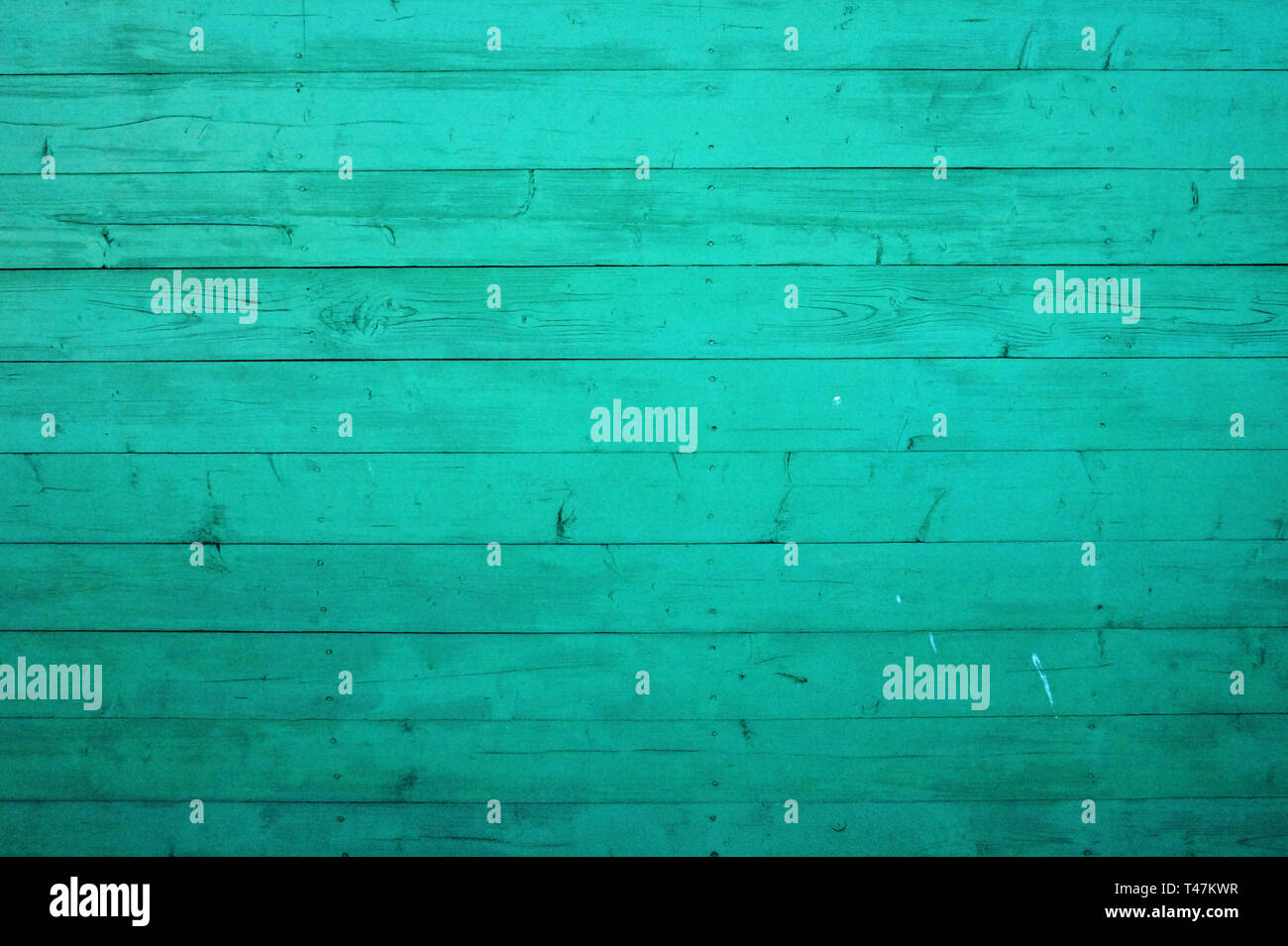 Unpolished wood texture background with metal nail heads. Shabby planks painted in light green colour. - Stock Image