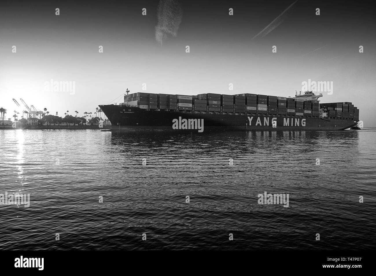 The Giant YANG MING Container Ship, YM UNANIMITY, Enters The Los Angeles Main Channel, Bound For The Port Of Los Angeles, California, USA. - Stock Image
