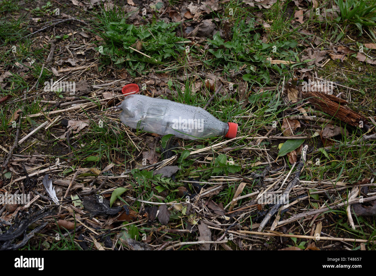 Clear plastic bottle with red top thrown away in North wales uk Stock Photo