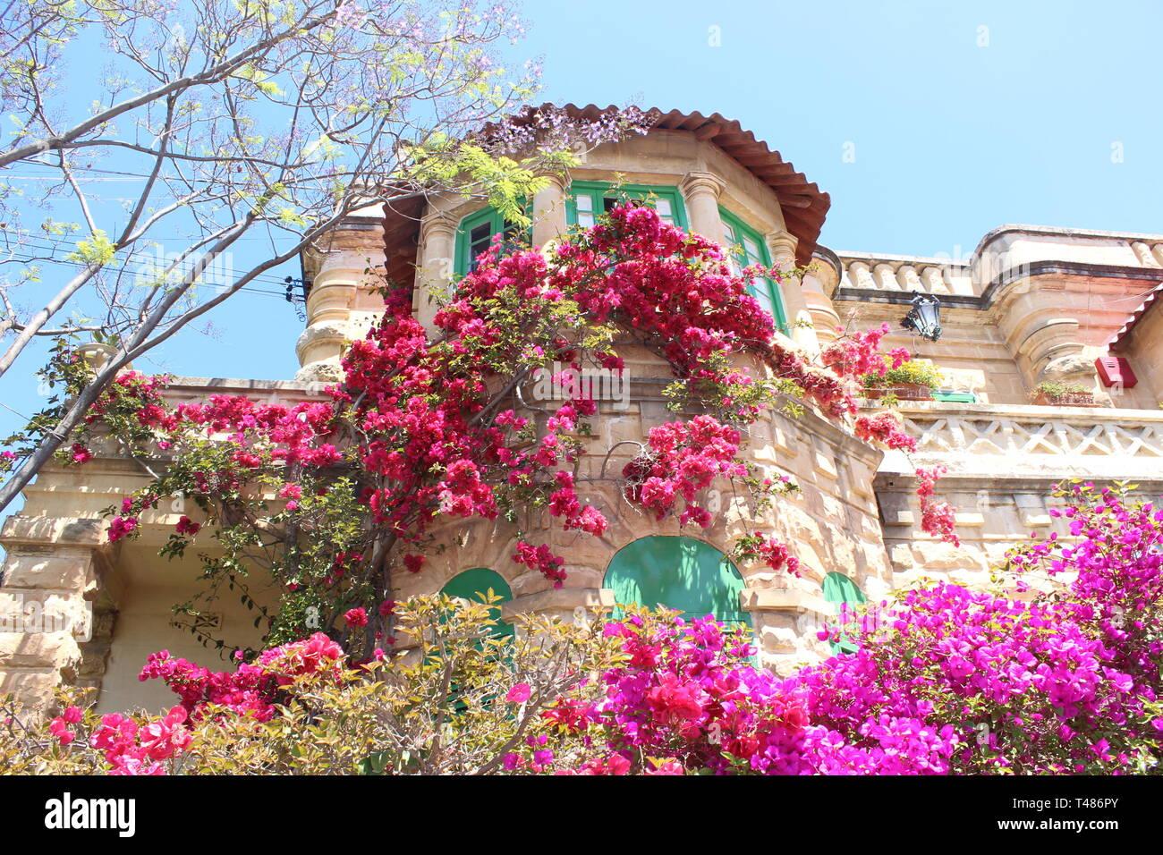 Südländisches Haus im mediterranen Stil mit blumiger Hausfront - Stock Image