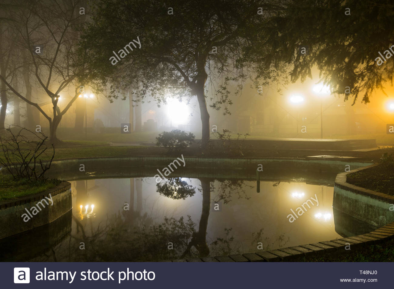 Night Lights Pool Park - Stock Image