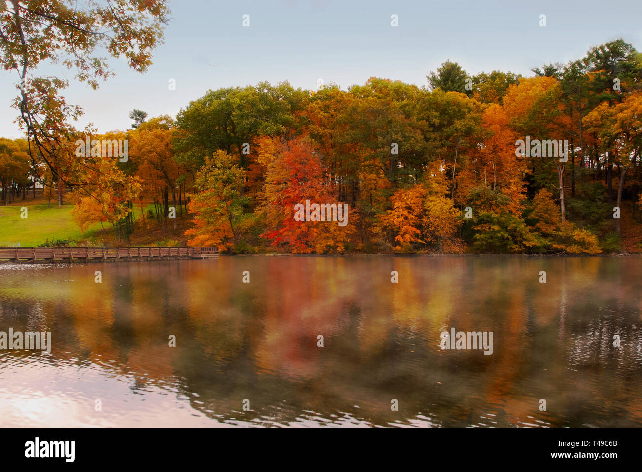 Autumn Colors - Stock Image