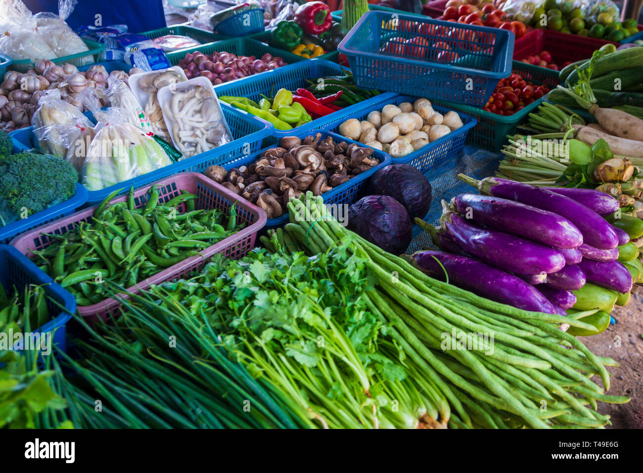 Thai Asian grocery bazaar with fresh vegetables - Stock Image