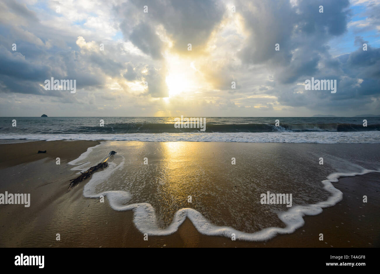Gentle waves spume at sunrise, Palm Cove, Cairns Northern Beaches, Far North Queensland, FNQ, QLD, Australia - Stock Image