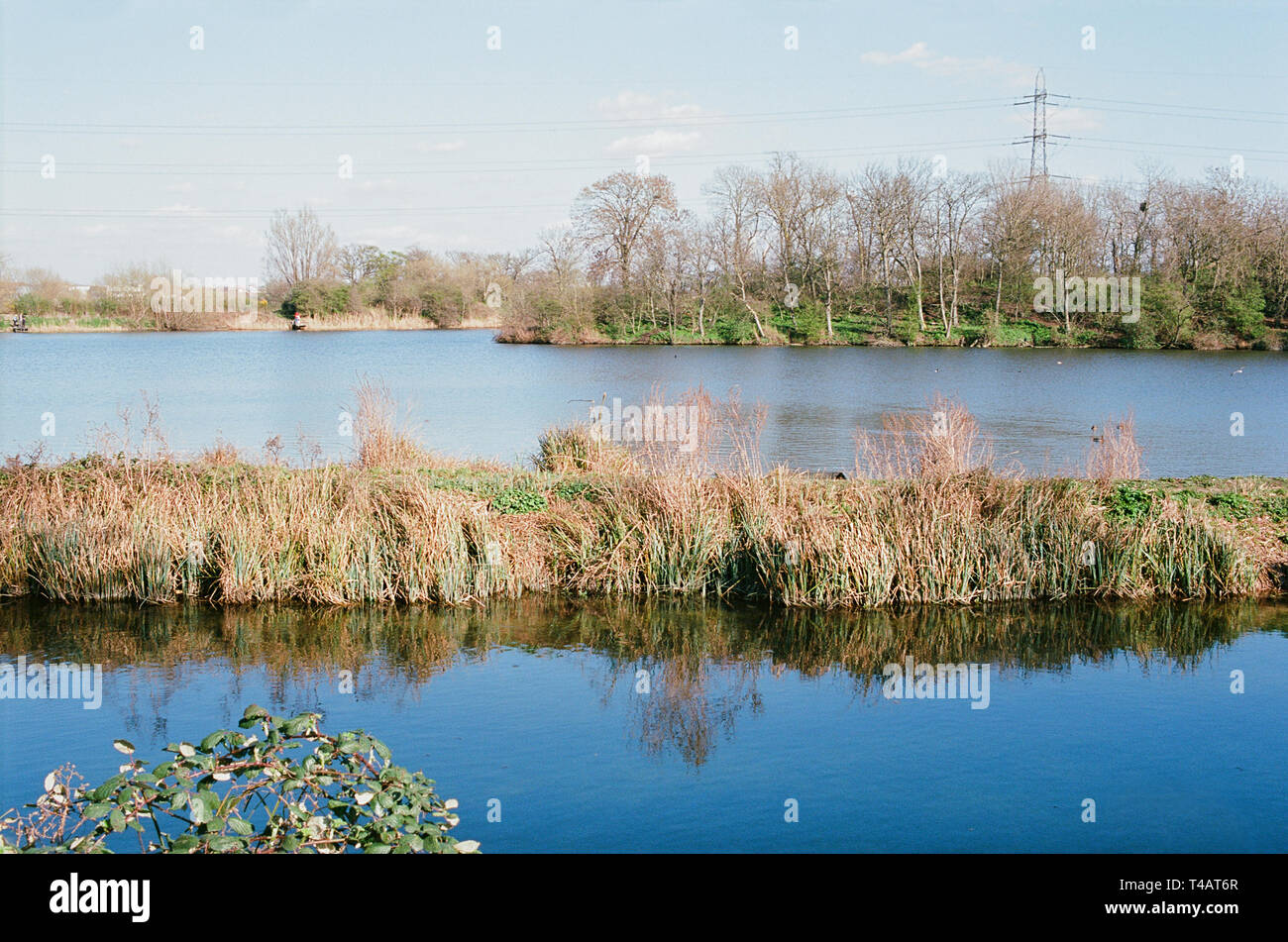 Reservoir No1 and Coppermill Stream in springtime, in Walthamstow Wetlands Nature Reserve, North East London UK - Stock Image